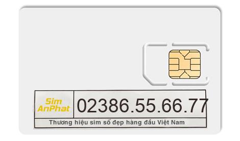 mua sim 02386556677